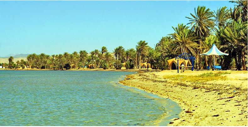 مدينة املج في السعودية تاريخ املج جزر املج السياحة في املج شبكة أملج